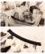 蝶々模様揺れるチュールフレアスカート